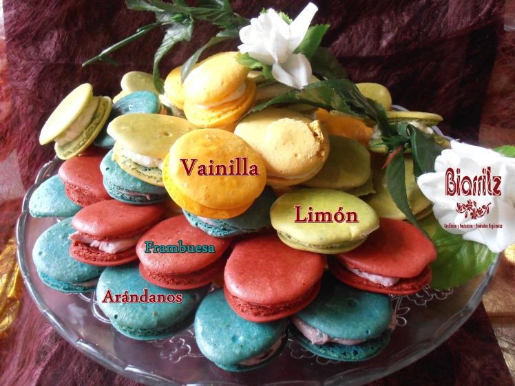 Macarons de arandanos, frambuesa, limón y vainilla, dile te quiero con dulzura.